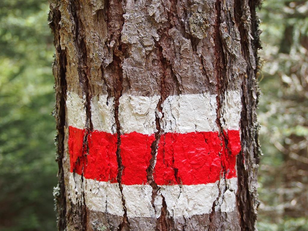 Un balisage rouge et blanc pour accompagné au mieux les participants