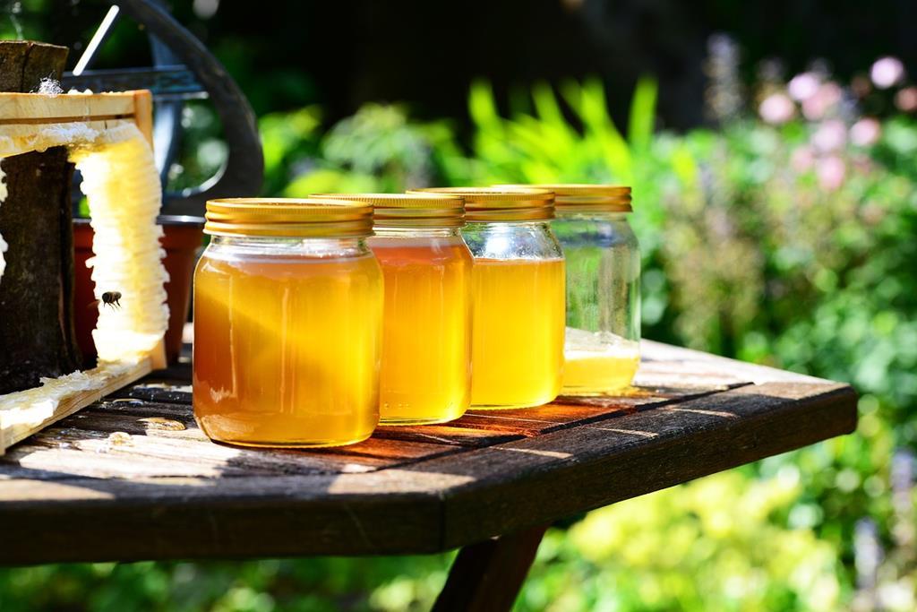 Le miel, produit local et reflet du terroir savoyard